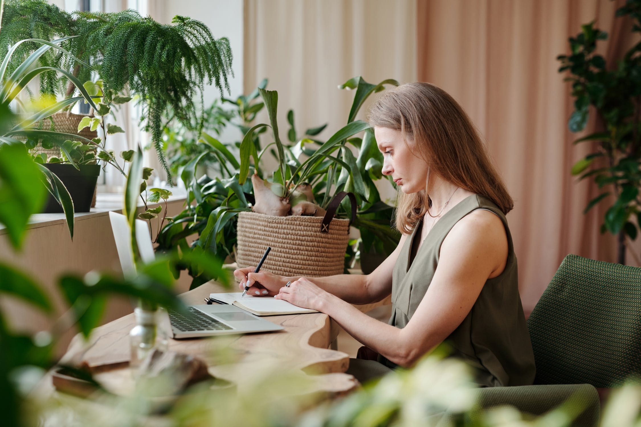 office plants - plants for office